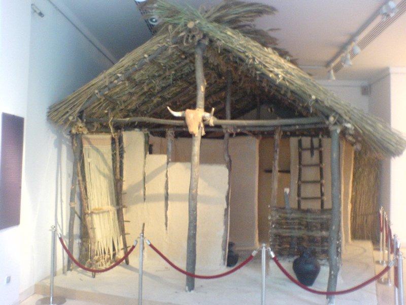 Реконструкция деревянного дома. Винча