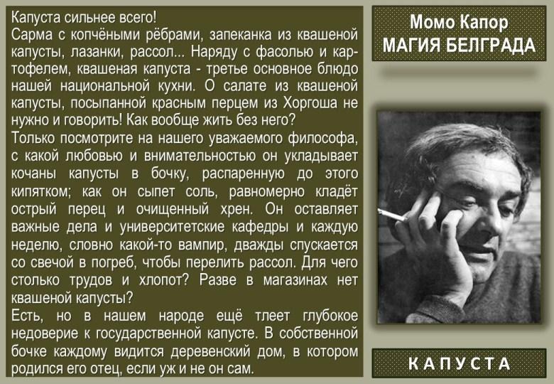 35 Momo Kapor - Kapusta