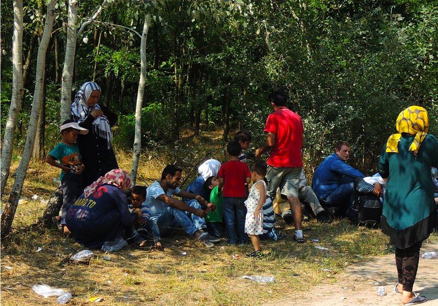 Шума у Мађарској, недалеко од границе. Имигранти, прешавши ноћу храницу, чекају помоћ