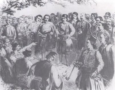 crnogorska skupština